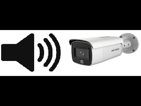 Hikvision Camera Built in Audio and Flashing Light