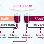 About Cord Blood Banking